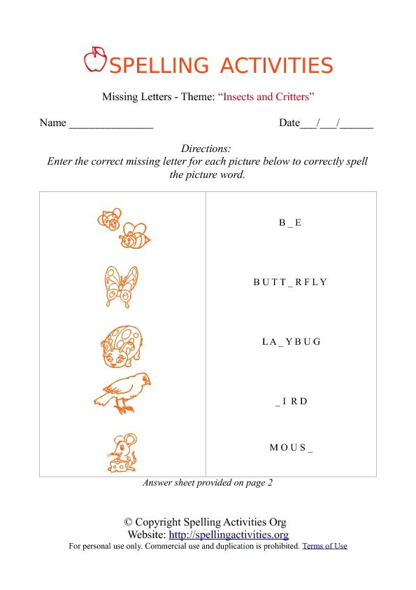 insects worksheets free | ... Insect name on the activity worksheet ...