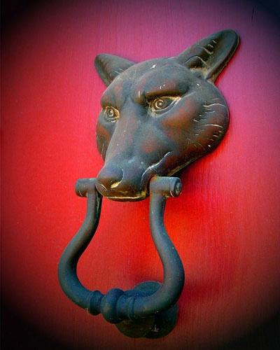 202 best images about door knobs knockers handles on pinterest door pulls door handles and - Wolf head door knocker ...