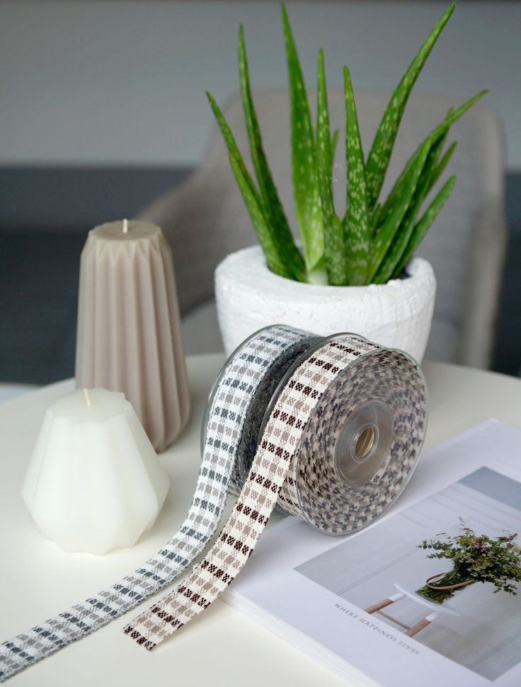 Ribbons, aloe vera, interior, design, home decoration