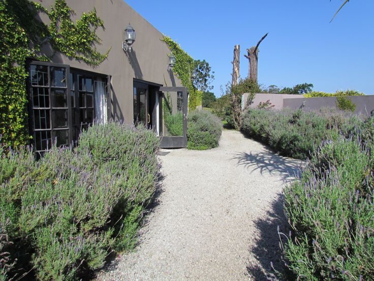 The walkway to the accommodation had the air filled with lavendar scent... Was blown away
