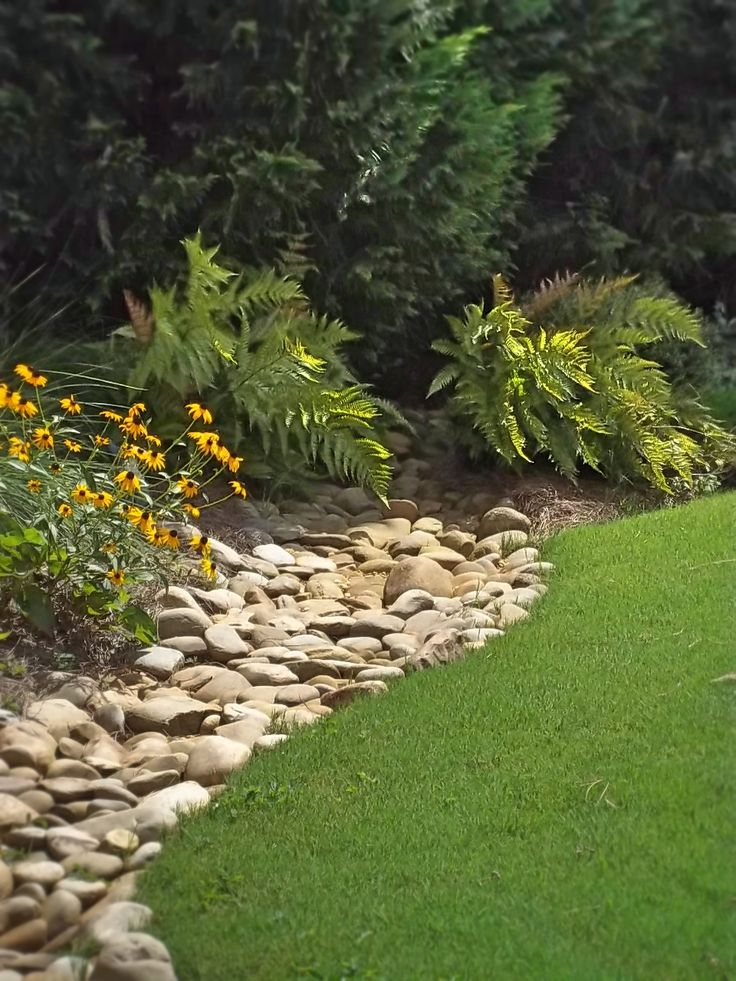 Dry Creek at the edge of a lawn, with plantings; Autumn Fern, Rudbeckia, River Rock