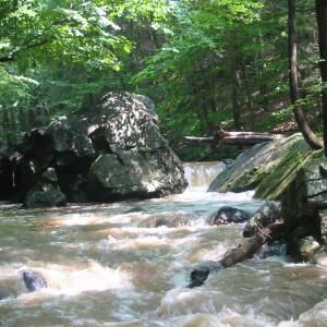 Hacklebarney State Park.  Nice trails.  Great river that runs through to climb on rocks or possibly cool off in the summer.  Hills, but not much challenge.