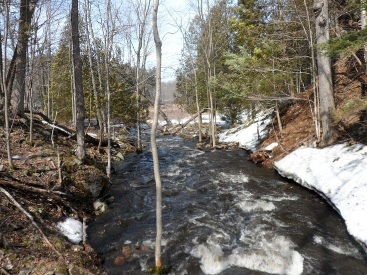 Spring thaw at Frontenac Provincial Park @Ontario Parks
