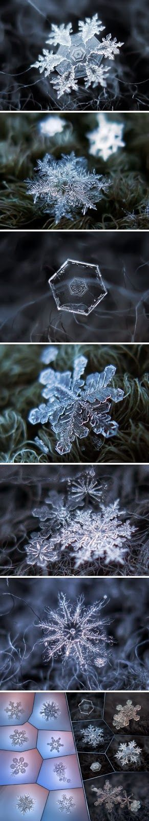 Russian photographer Alexey Kljatov has created an ingenious and inexpensive DIY camera rig capable of capturing excellent close-up pictures of snowflakes.