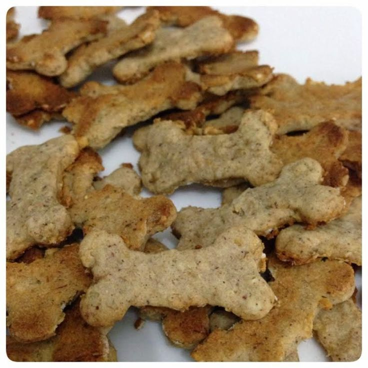 Oia que comida boa!!!: Bom para cachorro...