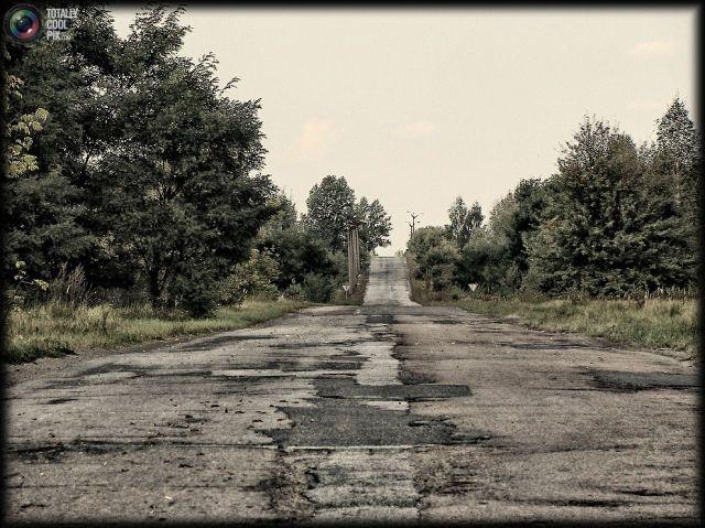 Chernobyl Today   Chernobyl Today (52 pics)