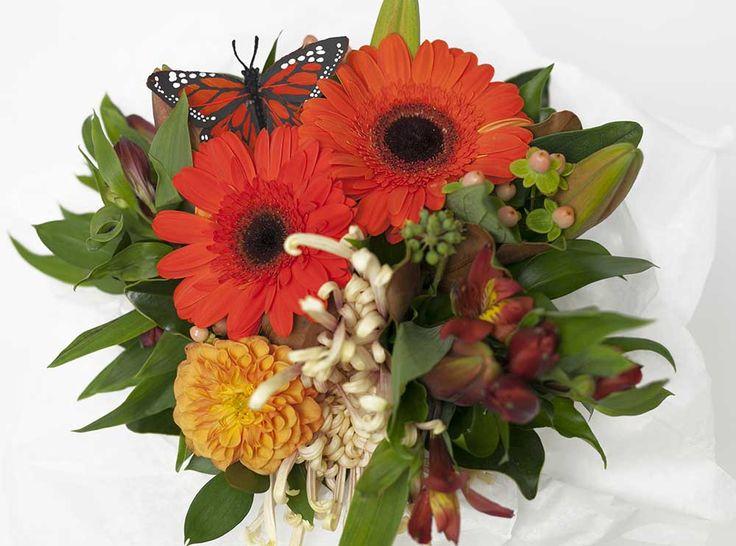 Orange Brown Flower Box - Expressions Florist Cambridge NZ
