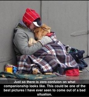 TRUE LOVE! this picture shows the unconditional love this beautiful dog has