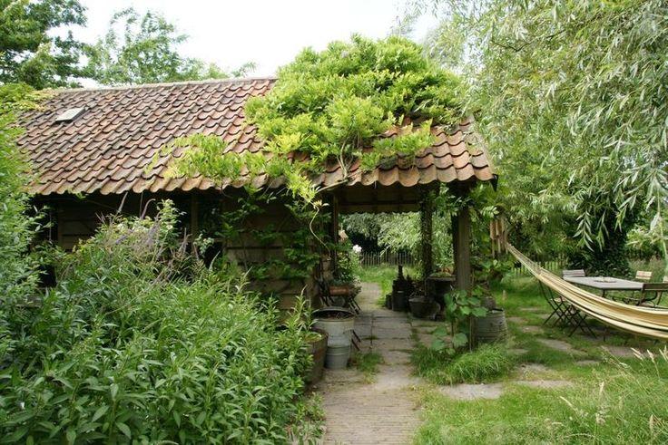 Een landelijke tuin vormt één geheel met het omringende landschap. Sleutelwoorden zijn zachte, golvende lijnen en rustgevende kleuren. Ook een kleine tuin kan je een landelijke look geven. Beperk je dan tot een mooi plantenborder of zet enkele ...