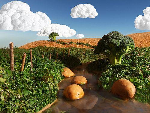 GCSE art exam: Vegetable landscape- Explored by Billy Clapham, via Flickr