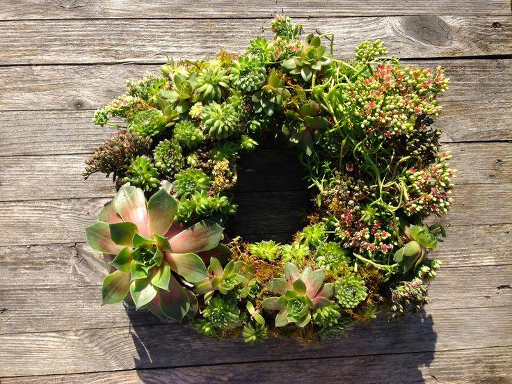 Living#Wreath#Succulent