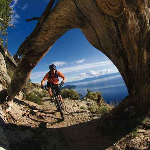 Biking at Tahoe #mtb #mountainbiking #travel
