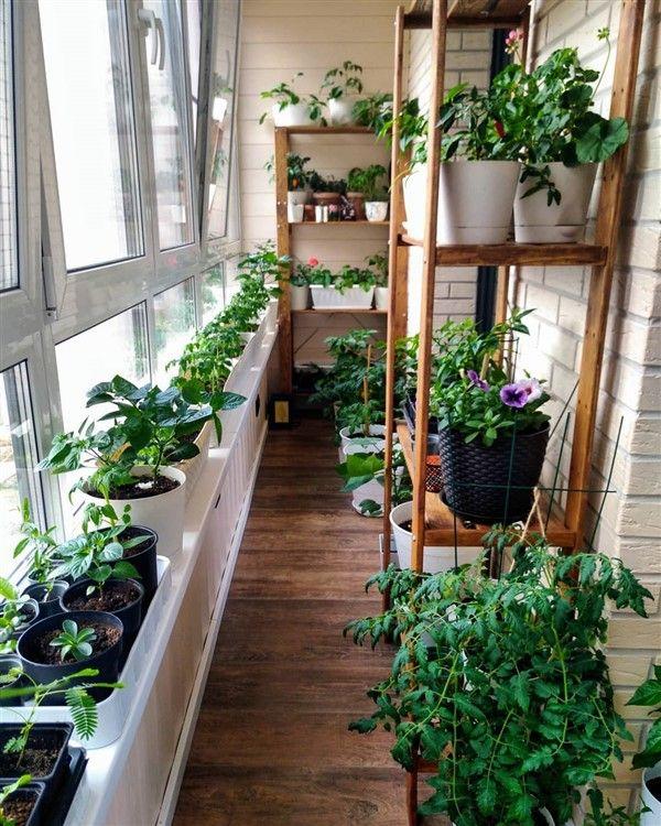 Balcony Container Vegetable Gardening Guide Unique Balcony Garden Decoration And Easy Diy Ideas In 2020 Container Gardening Vegetables Balcony Herb Gardens Container Gardening
