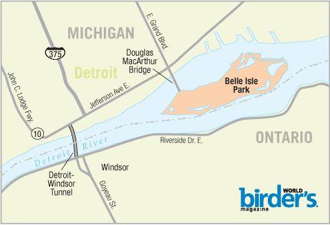 13. Belle Isle Park, Detroit, Michigan - BirdWatching