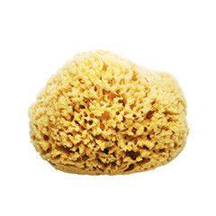 Sustainably harvested, natural sea sponge