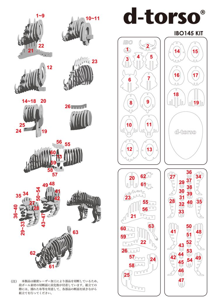 IBO 145_natural d-torso paper craft by Aki Co.,Ltd.