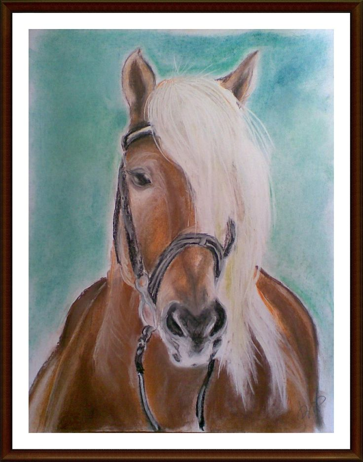 """portret konia"" suchy pastel"