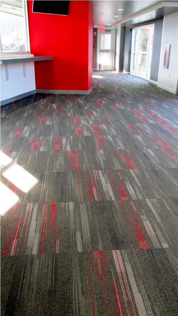 interior graceful dalton carpet cleaning services also dalton marine carpet from 6 tips and information
