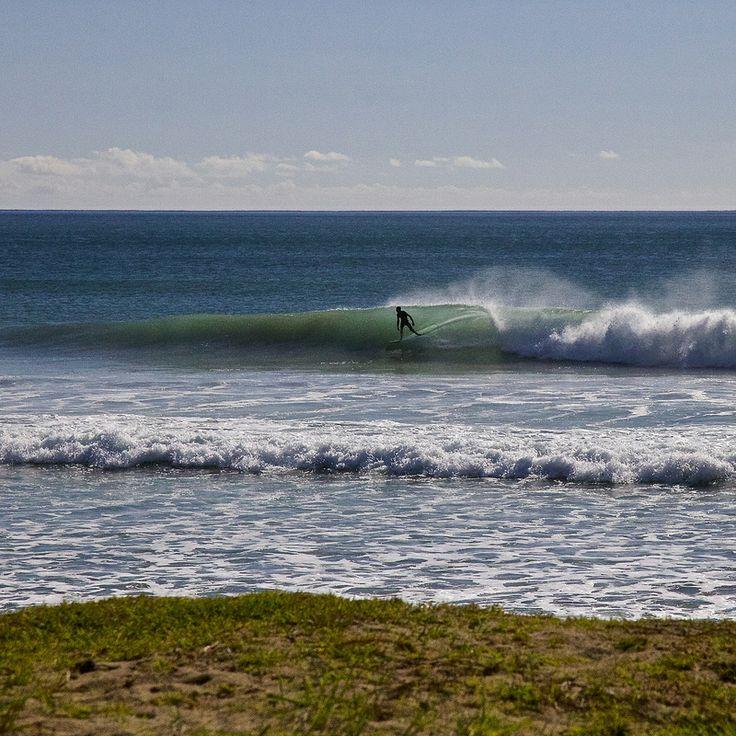 Cruising.  Surfing at Taupo Bay Northland New Zealand