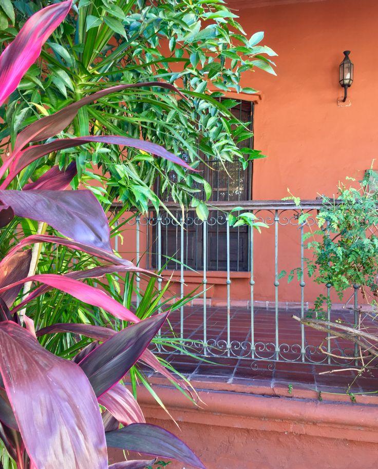 Casa Viola de Asunción-Paraguay