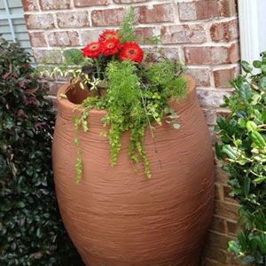Enhance Your Rain Barrel With A Colorful Garden