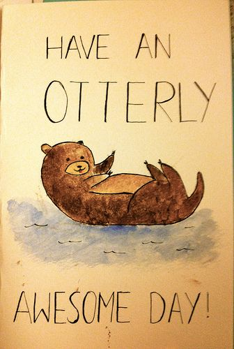 (11) You guys otter appreciate this - Imgur