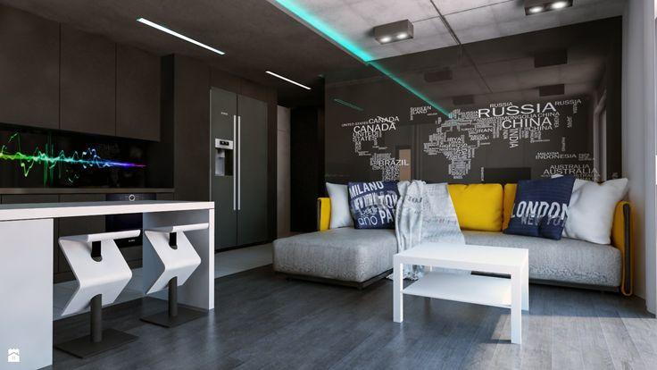 mieszkanie dla młodych - zdjęcie od Michał Ślusarczyk - Salon - Styl Nowoczesny - Michał Ślusarczyk
