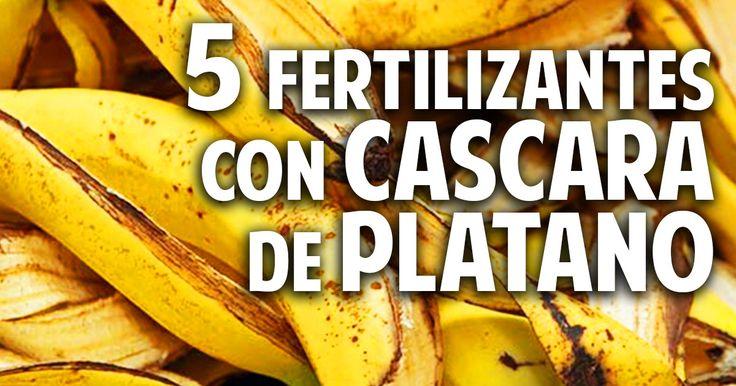 Cosas del Jardin: 5 fertilizantes con Cascara de Plátano - Más Frutos! Potasio!