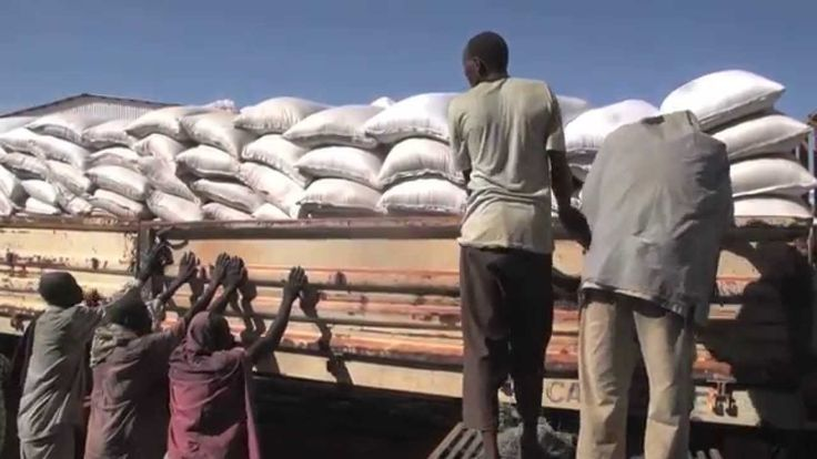 Food from USAID was carried in the first WFP convoy into South Sudan from Sudan. The convoy had enough food for 45,000 people for a month. (10 November 2014)