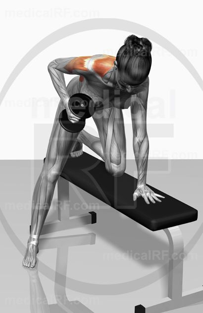 One arm dumbbell row (Part 1 of 2)