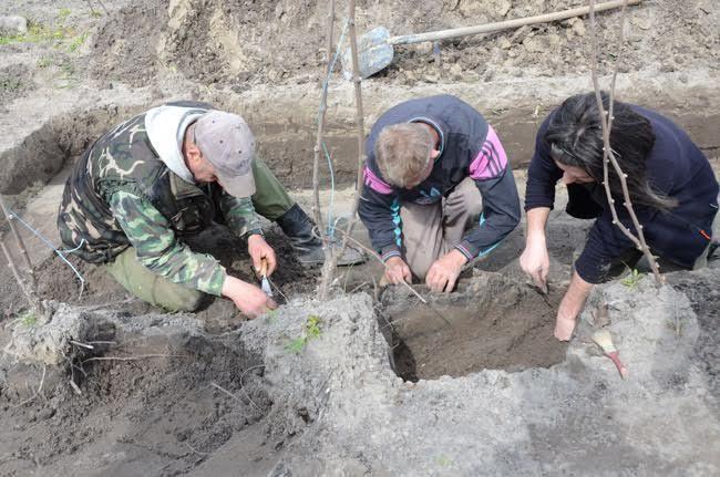 Mozaik: Szenzációs leleteket találtak a tatárjáráskori vérengzések helyszínén - NOL.hu