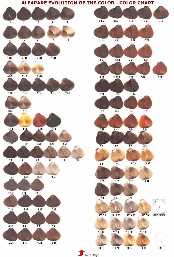 Tonos Carta De Colores De Pelo Issue Alfaparf Milano Evolution Of The Color Tenido Del Cabello