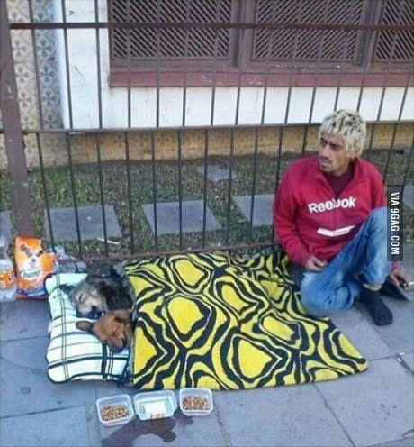 "Some people are poor but rich by heart Hope you're doing well.From your friends at phoenix dog in home dog training""k9katelynn"" see more about Scottsdale dog training at k9katelynn.com! Pinterest with over 21,300 followers! Google plus with over 280,000 views! You tube with over 500 videos and 60,000 views!! LinkedIn over 10,100 associates! Proudly Serving the valley for 11 plus years now on instant gram! K9katelynn"
