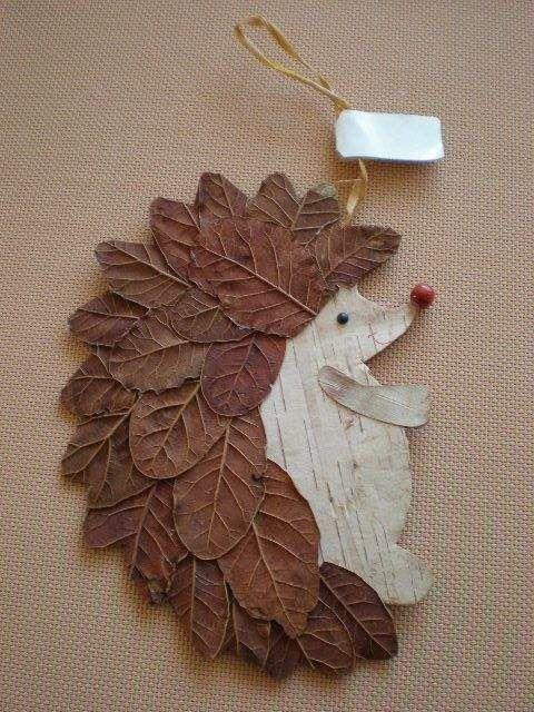 Erizo con hojas