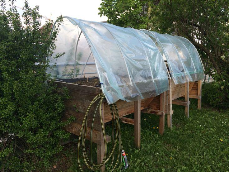 Gewächshausaufbau für meine Hochbeete aus Kunstoffrohren, Gewächshausfolie und ganz viel Kabelbindern.