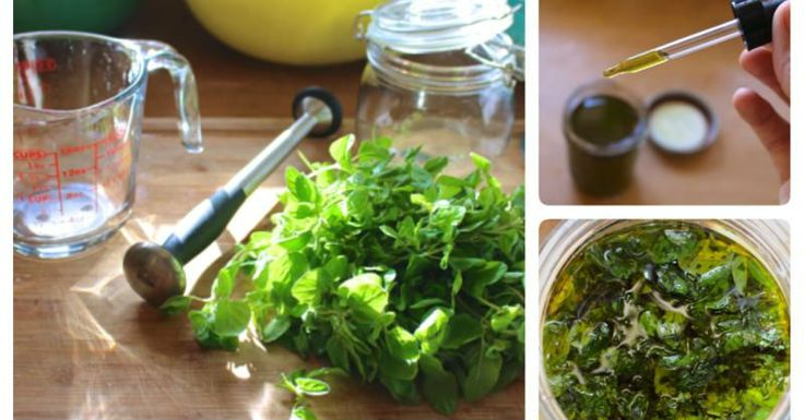 Introduction Imagine easing the symptoms of a cold or flu with something you can make at home using only two ingredients – no over ...