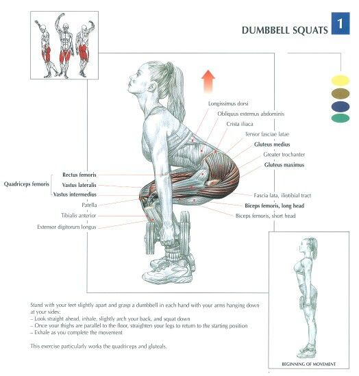 Dumbbell squats #fitness #workout #butts #squats
