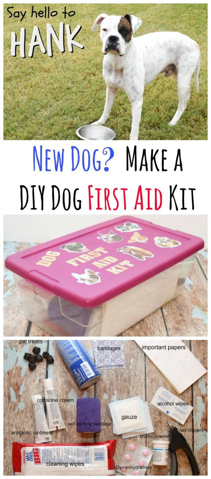 Have you got a new rescue dog or puppy?  Create this easy do it yourself kit to easily find what you need to care for them.  Make a DIY First Aid Kit for your New Dog! #ad #NewBeneful