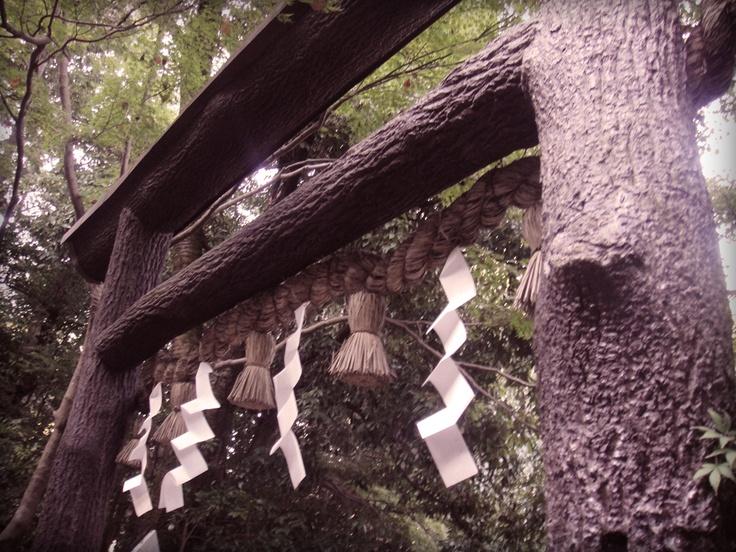 Kuroki(Black wood) Shrine gate. Nonomiya Shrine