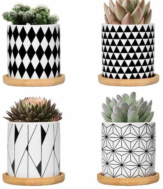 Nomadic Boho 3 Window Sill Planters Black White Plant Pot Succulent Cactus Plants Your Choice