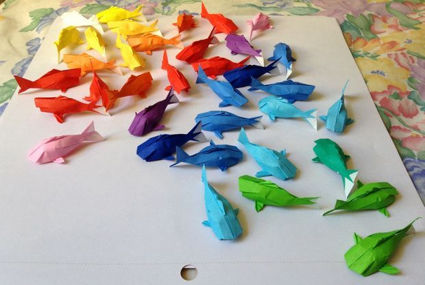 Rainbow Koi #2.jpg Great project idea from instructables. Any sort of origami (or plastic animals) could work.