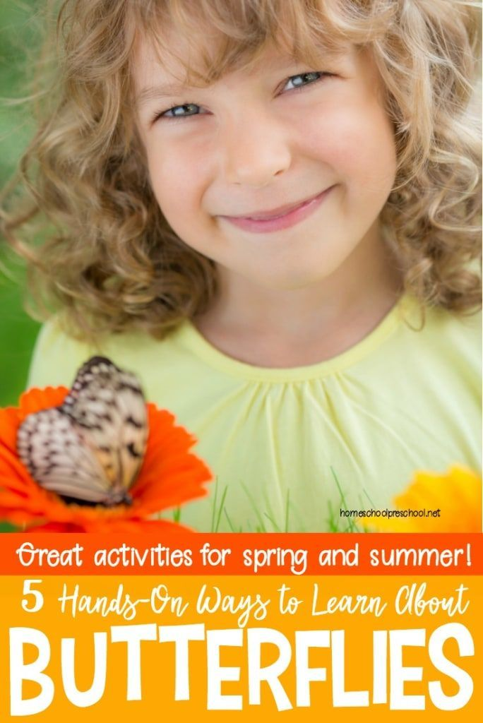 Spring is the best time of year to learn about butterflies. If you're lucky, you'll be able to watch the entire life cycle. Come discover how you can celebrate Learn About Butterflies Day! #homeschoolprek #preschool #homeschooling #spring #summer #butterflies #learningaboutbutterflies #butterflygarden #caterpillars #insectlore   https://homeschoolpreschool.net/celebrate-learn-about-butterflies-day/