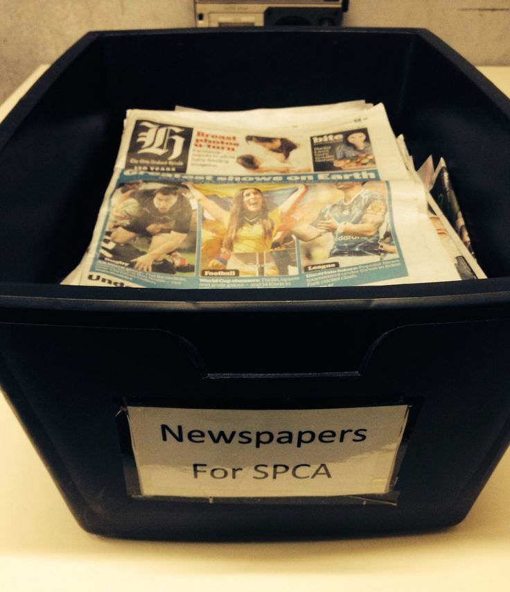Off to deliver our regular newspaper donation to the SPCA!   http://www.thecrownnapier.co.nz