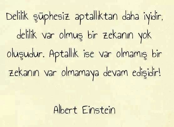 '' No doubt, madness is better than stupidity. Madness ; intelligence once was there, then ooze away.  If stupidity ; an intelligence had never existed and continue not to exist.'' Albert Einstein