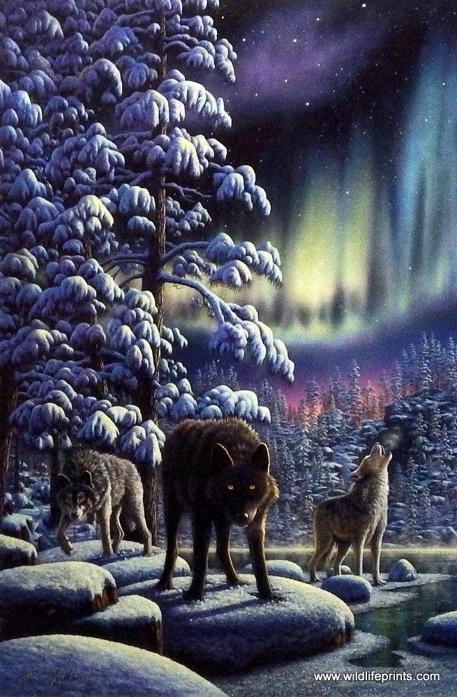 Kim Norlien River of Light-Wolves