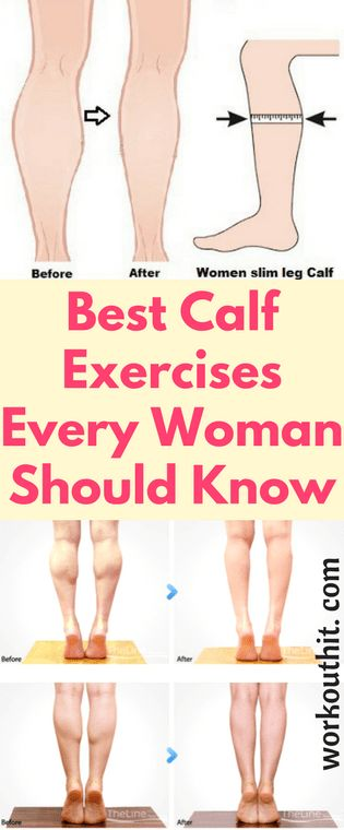 The calf is composed of two major muscles: the gastrocnemius, a large muscle located near the top of the calf, and the soleus, a smaller muscle on the inside of the calf. Most women want these muscles to be toned so they can have shapely, attractive calves. Fortunately, there are some effective calf exercises that …