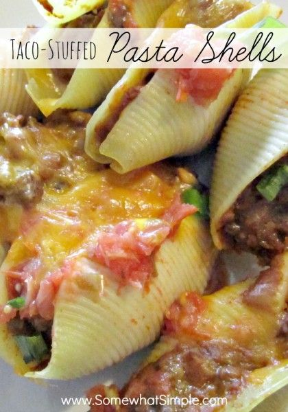 taco stuffed pasta shells recipe - simple, easy and delicious!