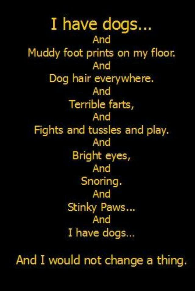 All true...except about fights. I've never seen my two pups get in a scuffle.