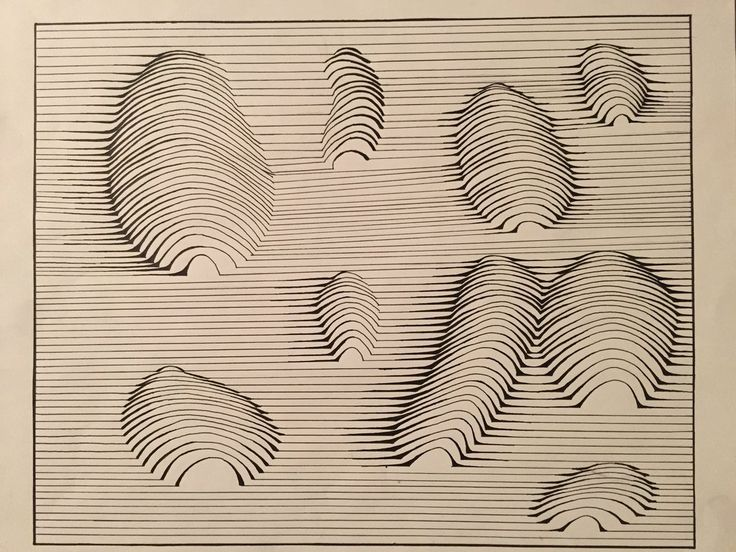 History Of Contour Line Drawing : Best animals cross contour images on pinterest