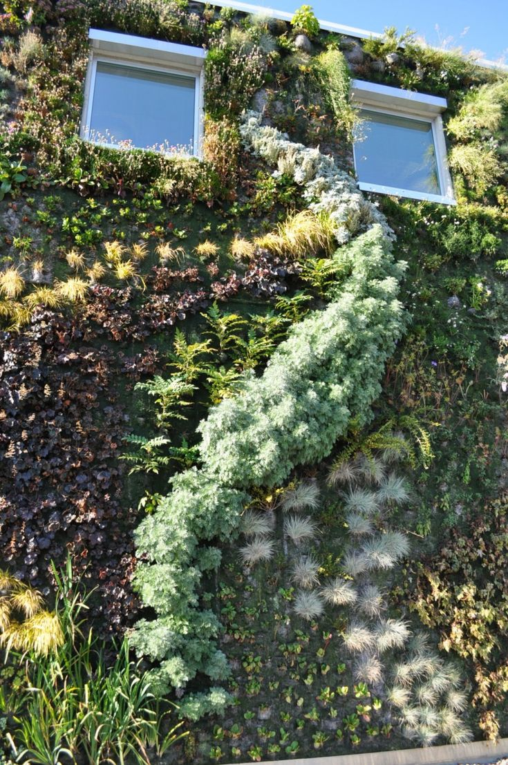 The beautiful arrangement of these plants and the relaxing image that offer make of this green wall a great point of attraction for this building that also proves very useful for it.